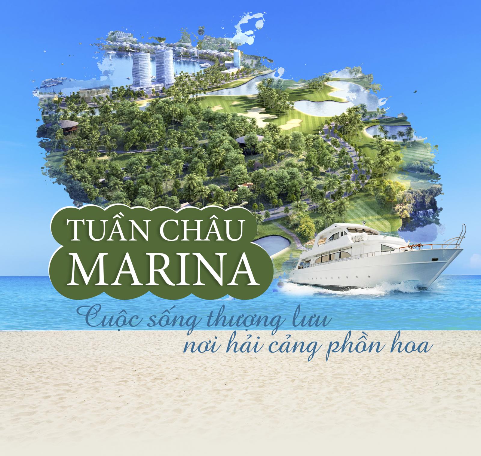 Tuần Châu Marina: Cuộc sống thượng lưu nơi hải cảng phồn hoa