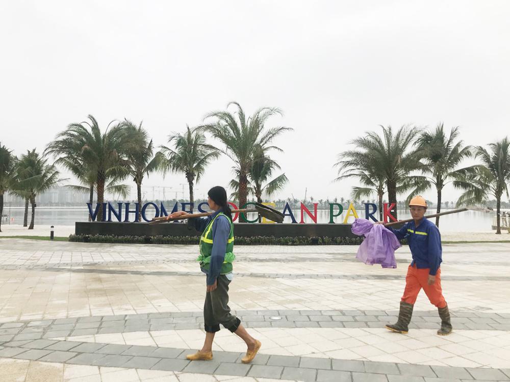 Ban đầu, dự án có tên là VinCity Ocean Park và được đổi tên thành Vinhomes Ocean Park vào tháng 3 năm nay. Hiện tại, dự án này là khu đô thị lớn nhất của Vingroup tại Hà Nội.