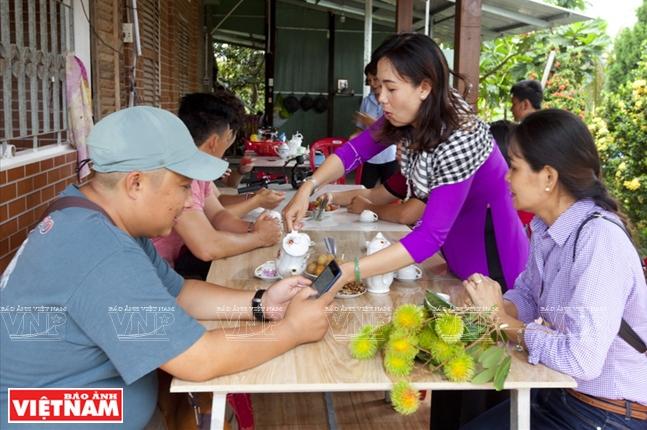 Thưởng thức trái cây khi đến với cù lao Tân Phong.