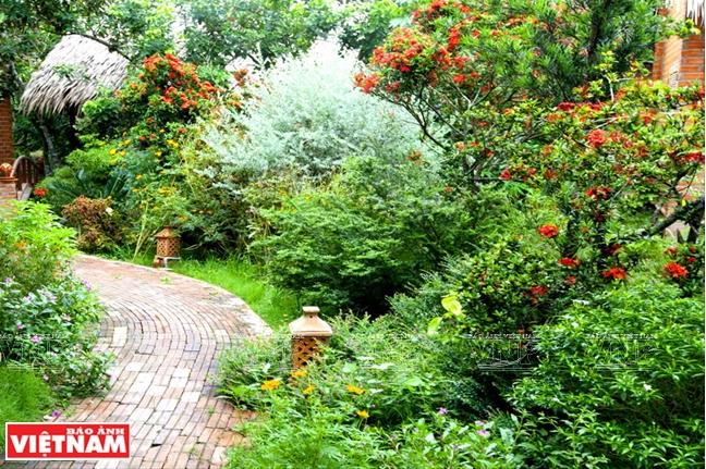 Lối dẫn xuyên qua những vườn cây ăn trái xanh mát.