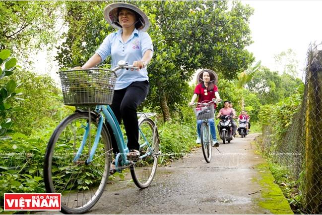 Đạp xe quanh cù lao, dọc hai bên đường có rất nhiều hoa và cây ăn quả.
