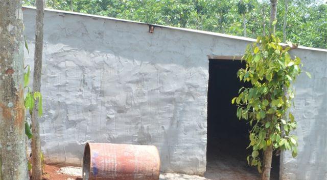 Một căn nhà mới dựng, chỉ có duy nhất một lối vào, nằm giữa rẫy của người dân.