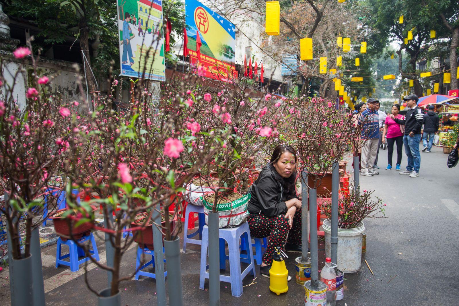 Mỗi dịp Tết đến Xuân về, người dân ở các làng Ngọc Hà, Nhật Tân, Tứ Liên, Quảng Bá... mang hoa đào, quất và các loại cây cảnh khác tới đây tụ họp.
