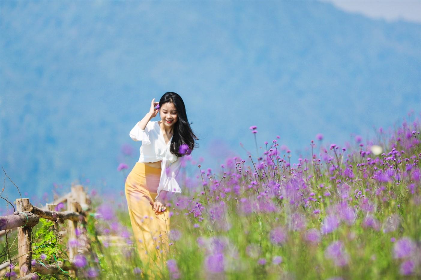 Loài hoa đẹp lạ trở thành điểm-phải-đến của đông đảo du khách khi tới Sa Pa và là điểm check-in lý tưởng của nhiều bạn trẻ