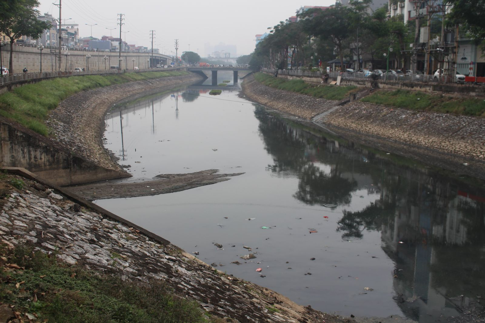 Trước sự ô nhiễm, mặt nước sông Tô Lịch thường xuất hiện những chất thải, rác thải chứ không phải là cá, hay các sinh vật khác.