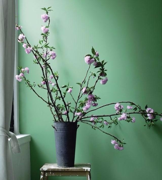 Những màu sơn tường hợp phong thủy giúp cho bạn luôn cảm thấy hạnh phúc