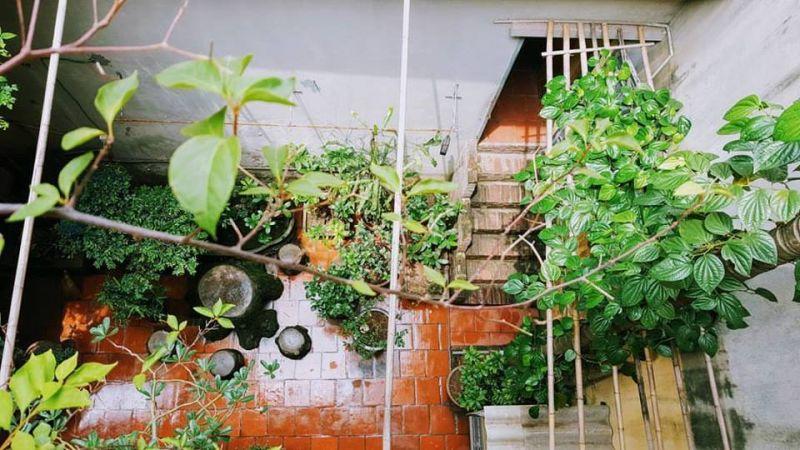 Chỗ đáng giá nhất của ngôi nhà...là khoảng giữa của hai cơn mưa