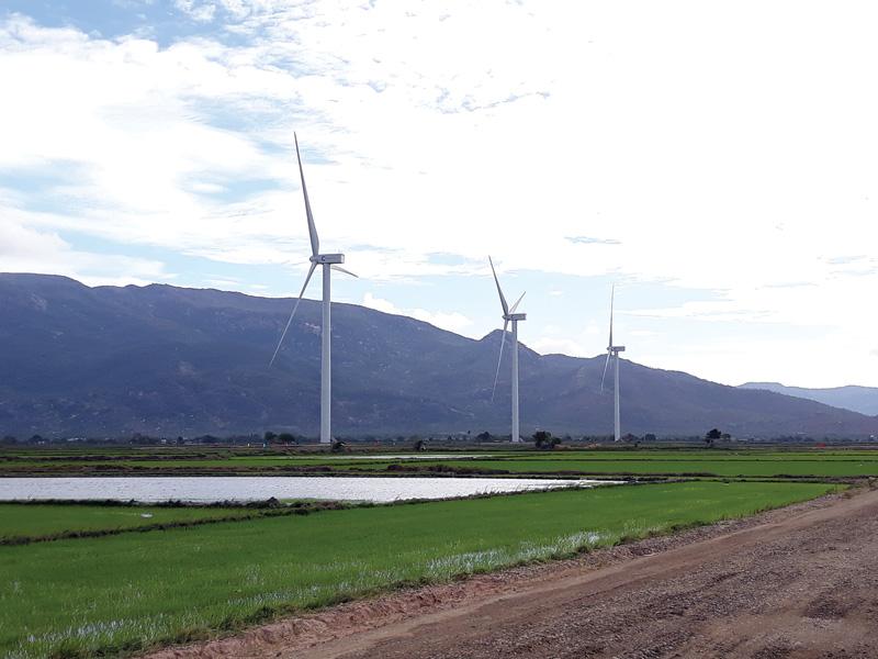 Điện gió: Kỳ vọng mới về năng lượng tái tạo của Việt Nam