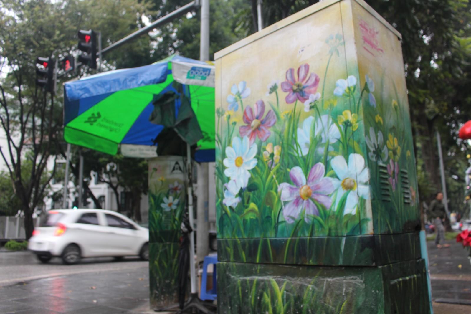 Trước đây, dự án đã được thí điểm tại các phố Lý Thường Kiệt, Phan Chu Trinh vào tháng Giêng năm 2017