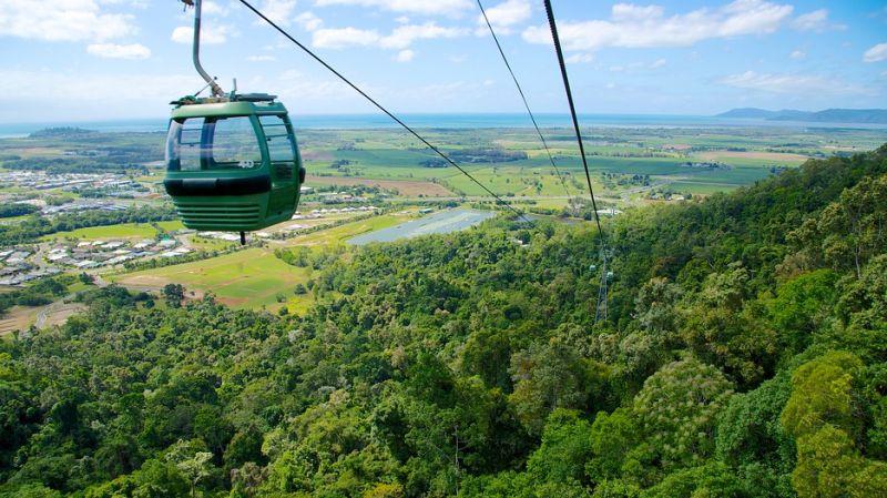 Cáp treo ở rừng nhiệt đới Barron ngày nay