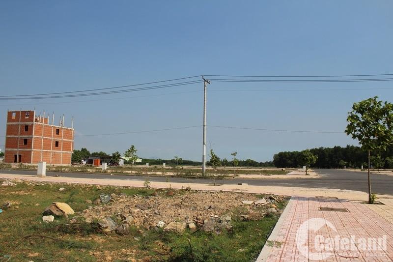 Dự án xây dựng cầu Cát Lái được chấp thuận là động lực đẩy giá đất Nhơn Trạch