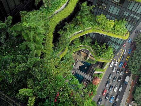 Làm thế nào để tạo nên cuộc cách mạng công trình xanh tại Việt Nam?