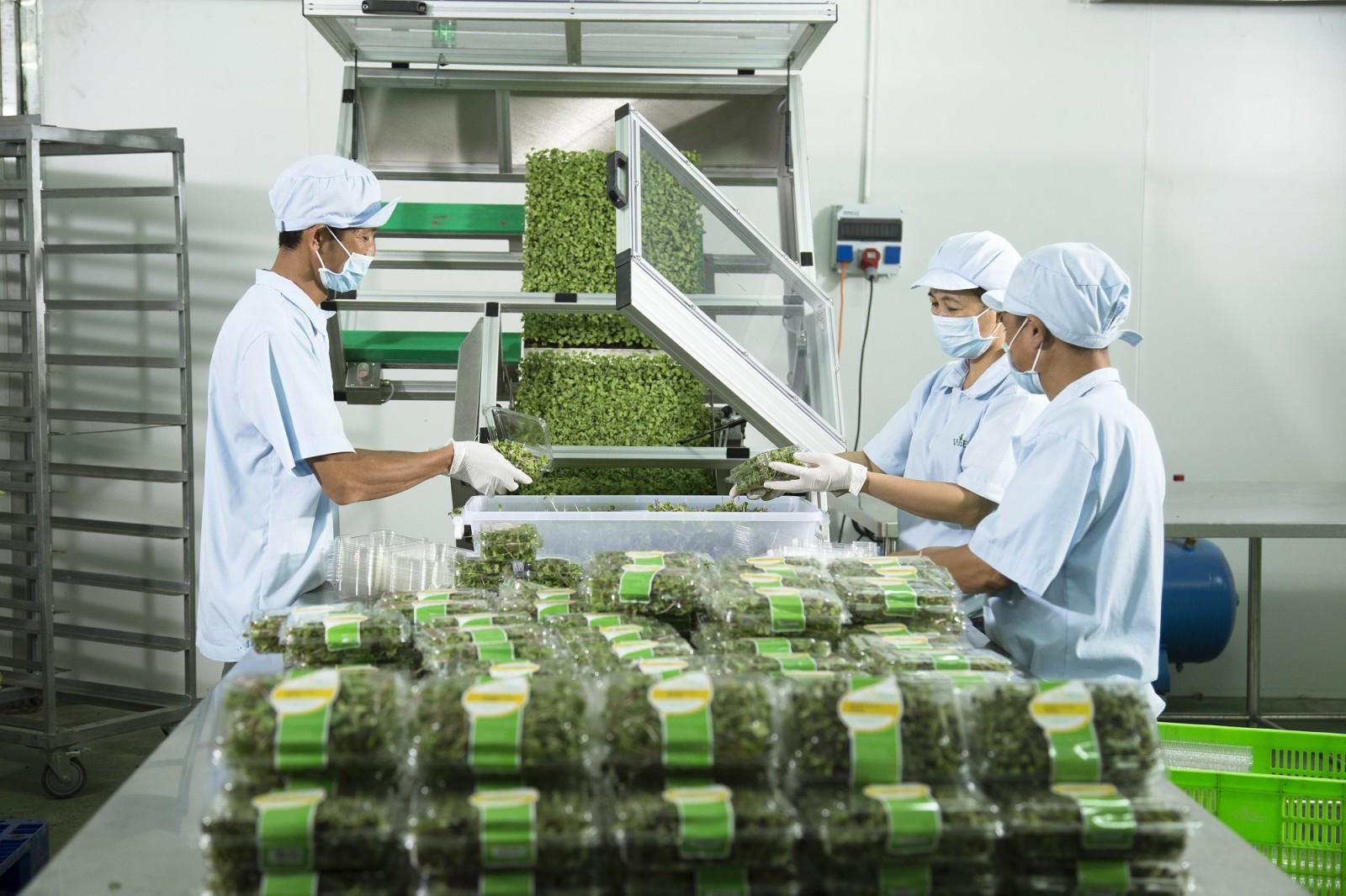 hiệu quả thu hút doanh nghiệp đầu tư vào nông nghiệp, còn