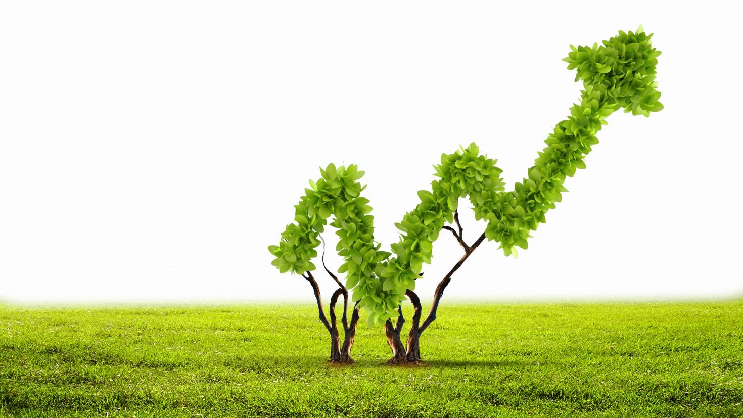 Hai mục tiêu phát triển và bảo vệ hoàn toàn có thể được cùng thực hiện với trái phiếu xanh