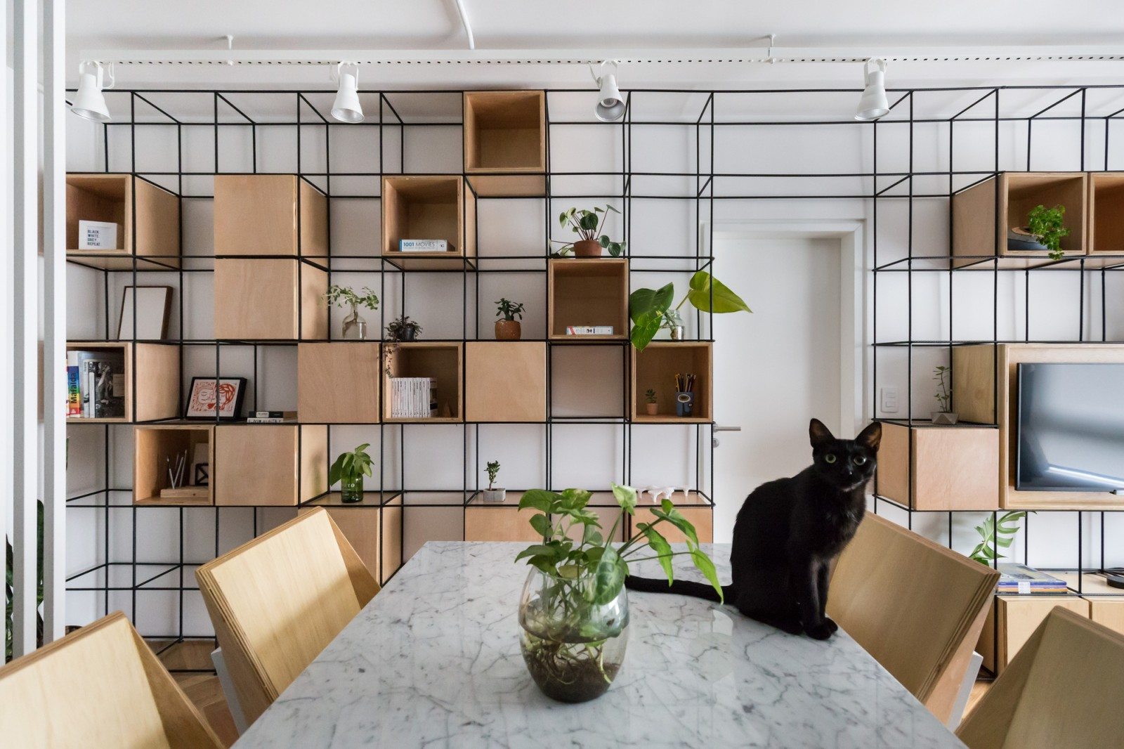 Santana Apartment / Atelier Aberto Arquitetura