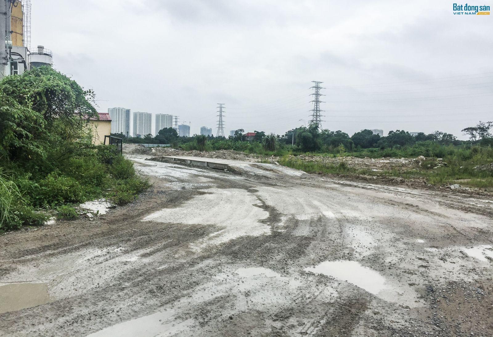 Đến nay, sau hơn 1 thập kỳ, dự án Khu đô thị mới Thịnh Liệt vẫn chỉ là bãi đất trống mọc đầy cỏ dại.