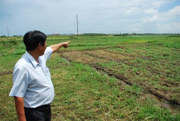 Dự án khu đô thị - Đại học Quốc tế (VIUT) sau 10 năm vẫn chỉ là bãi cỏ hoang.