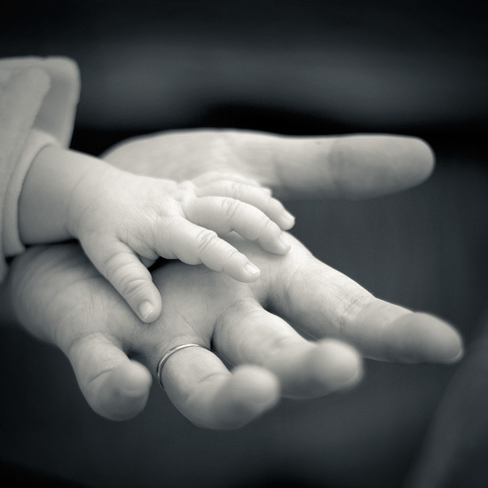 Biết ơn và tha thứ chính là con đường để đi đến thương yêu.