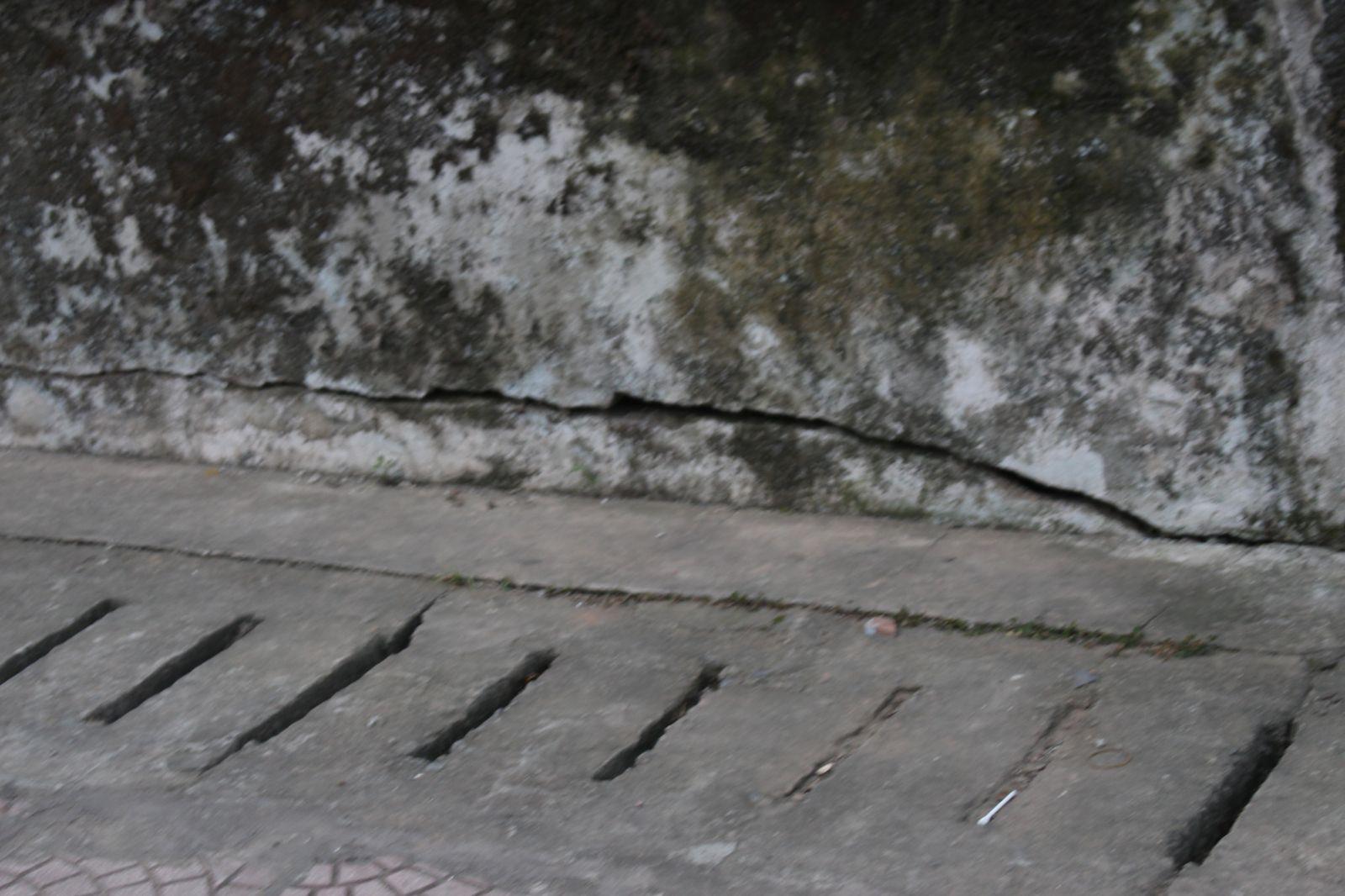 Phần móng nhà bị nứt, rêu mốc.