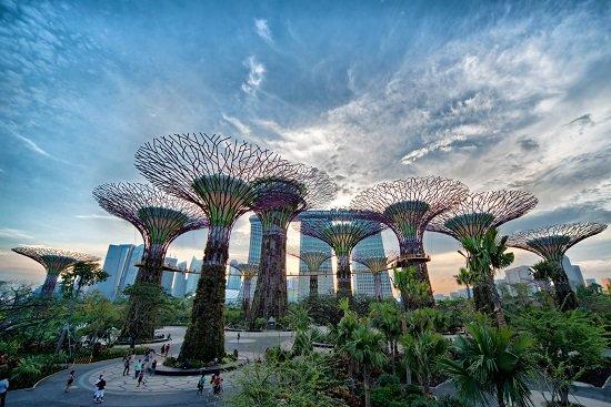 """""""lá phổi xanh"""" của Singapore là tổ hợp những công trình kiến trúc, nghệ thuật được thiết kế độc đáo."""