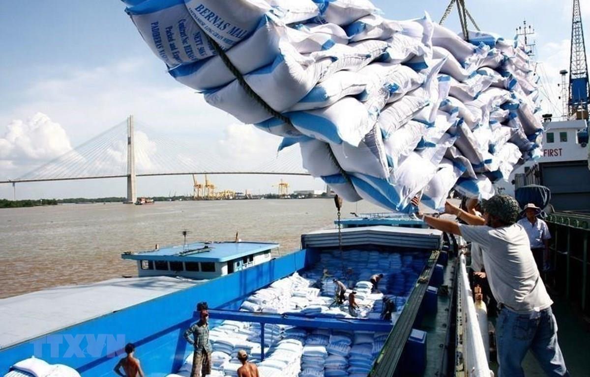 Vụ mở tờ khai xuất khẩu gạo lúc nửa đêm: Sai ở chỗ nào?