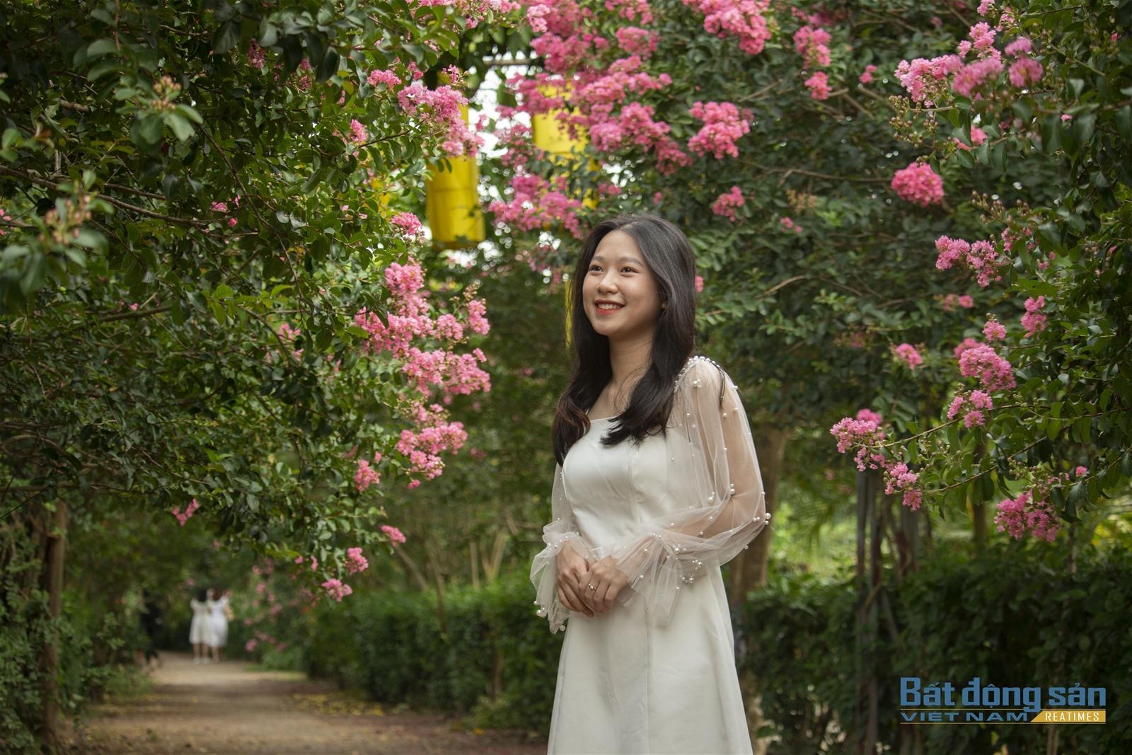 Thả hồn vào con đường hoa Tường Vy đẹp như mơ ở Hà Nội - 4